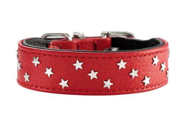 Hunter Halsband Capri Mini Stars rot
