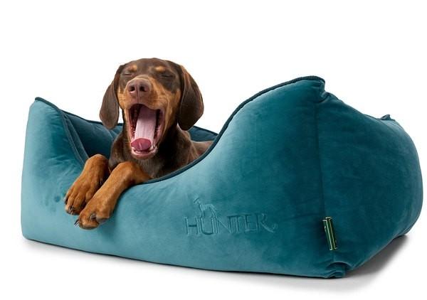 Hunter Hundesofa Bristol petrol / terracotta